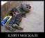 Воевавшие за украинских фашистов граждане РФ - стали бомжами!