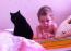Дети и кошки...