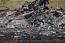 Новые факты о гибели Boeing MH17