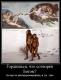 Сенсация: шимпанзе в Африке демонстрируют зачатки религии?!.