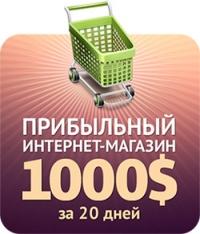 Прибыльный интернет-магазин: 1000$ за 20 дней