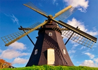 Представьте, что Вы назначены директором ветряной мельницы!..